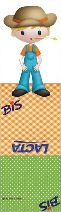 bis-duplo-personalizado-gratuito-fazendinha-3