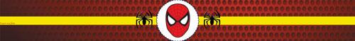 Papinha nestle Homem Aranha