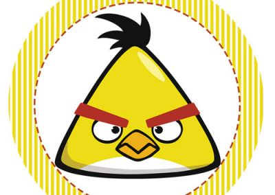 Tag-Angry-birds-18