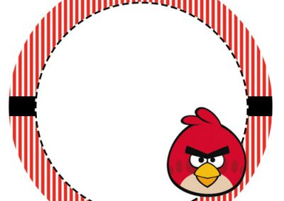Tag-Angry-birds-4