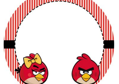 Tag-Angry-birds-6