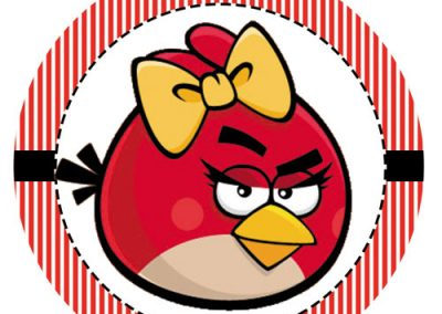 Tag-Angry-birds-7