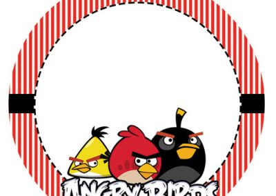Tag-Angry-birds-8