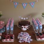 Chá de bebê azul e rosa da pequena Lis