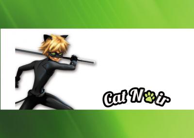 bala-personalizada-Cat-Noir