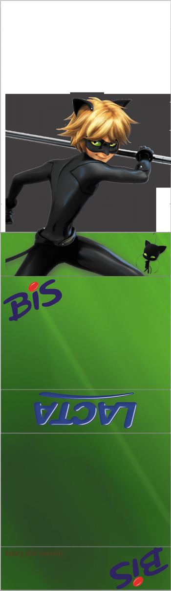 bis-duplo-personalizado-Cat-Noir
