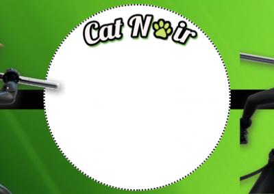 rotulo-agua-personalizada-Cat-Noir