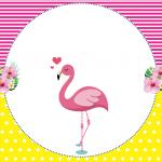 Flamingo: Personalizados gratuitos