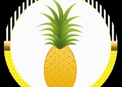 Tag-redonda-personalizada-gratis-abacaxi
