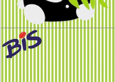 bis-duplo-personalizado-gratuito-panda-menino
