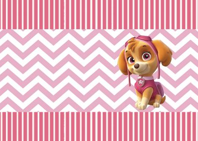 bala-personalizada-gratuita-skye-patrulha-canina-inspire-sua-festa