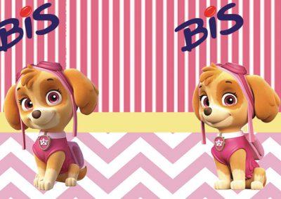 bis-duplo-sem-display-personalizado--skye-patrulha-canina-inspire-sua-festa