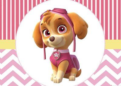 capa-skye-patrulha-canina-inspire-sua-festa