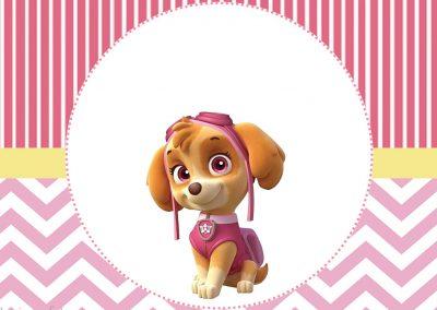 tubete-personalizado-gratuito-skye-patrulha-canina-inspire-sua-festa