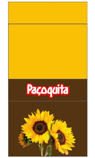 pacoca inspire sua festa GIRASSOL 1