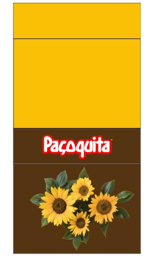 pacoca inspire sua festa GIRASSOL